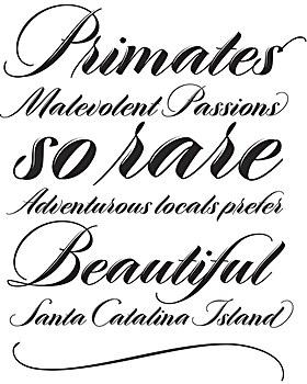 Meritage typeface