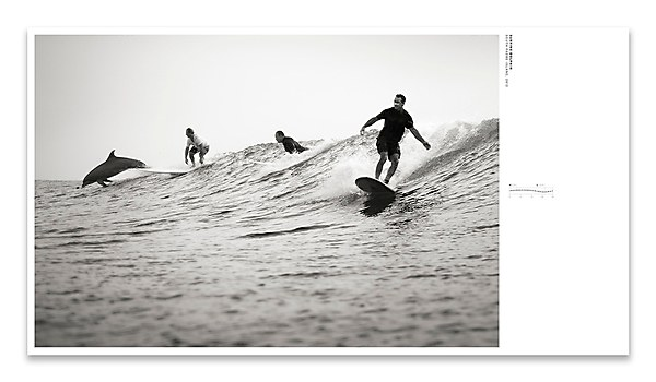 Surf Texas book