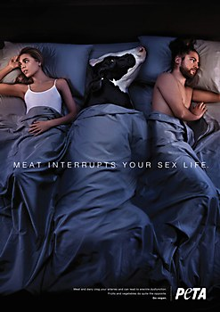 PETA print ads