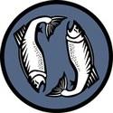 2 Fish Company, LLC